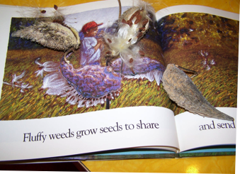 milkweed pods in the book and on the book
