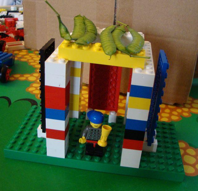 Build A Tabletop Or Model Sukkah