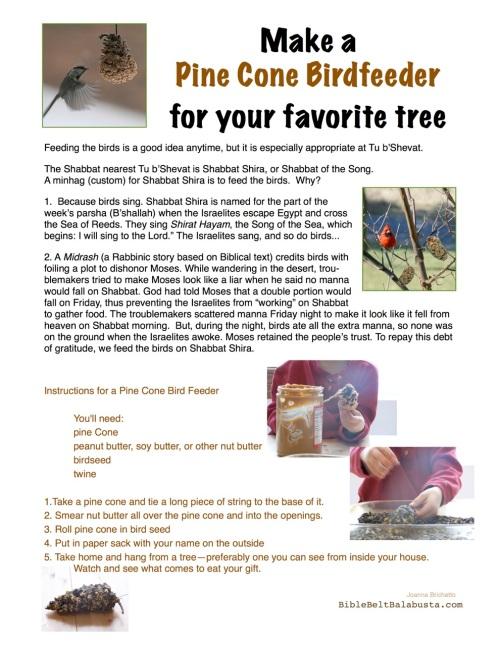 BirdFeeder sign, pinecone activity