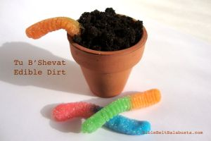 Edible Dirt, candy seeds, gummy worms