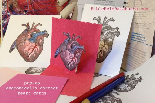anatomically correct heart valentine