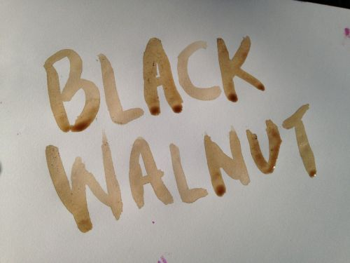 black-walnut-ink
